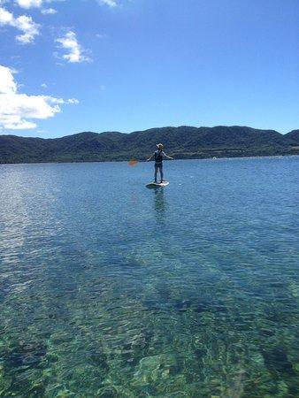 Ishigaki Island Eco Tour