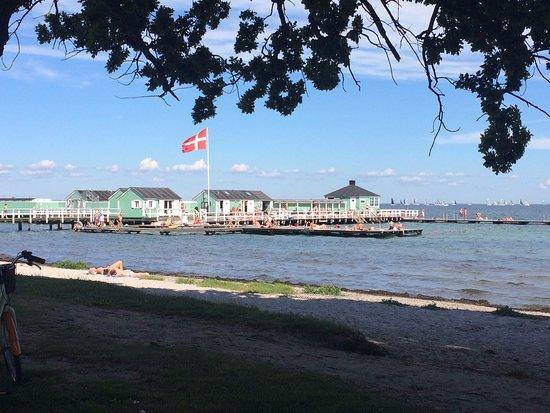 Charlottenlund, Denmark: The beach right across the street from Cafe Jorden Rundt
