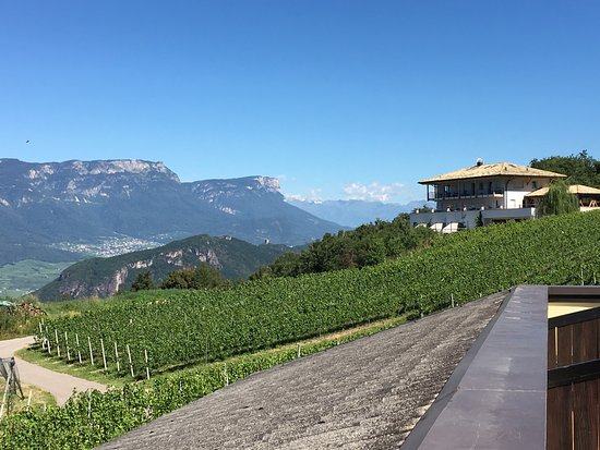 Montagna, Italia: View from the Tenz Terrace of vineyards and mountians
