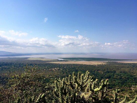 Lake Manyara Wildlife Lodge: photo4.jpg