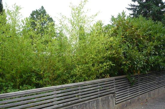Soultz, Frankreich: la terrasse noyée dans la verdure