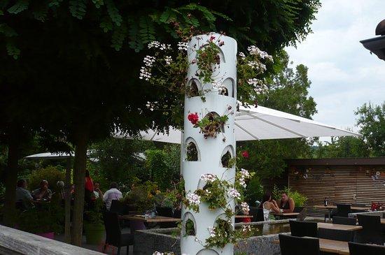 Soultz, Frankreich: en plus ungrand parasol