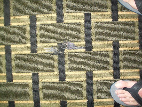 Baymont Inn & Suites Springfield: Huge hole in carpet also desk was missing nowhere to sit