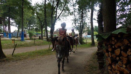 Ballan-Miré, France : balade a poney