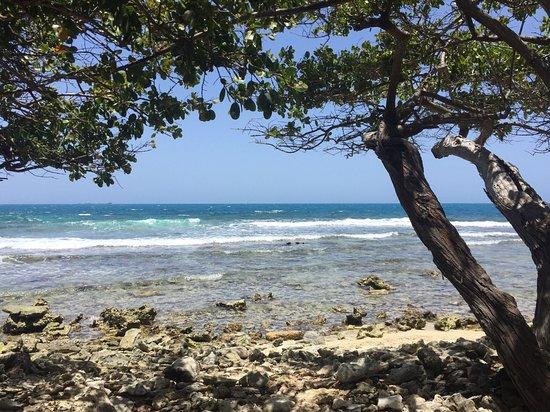 Isla Mata La Gata