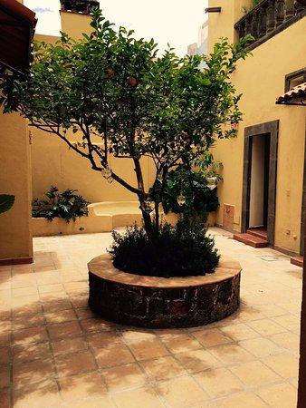 Hacienda El Santuario: photo1.jpg