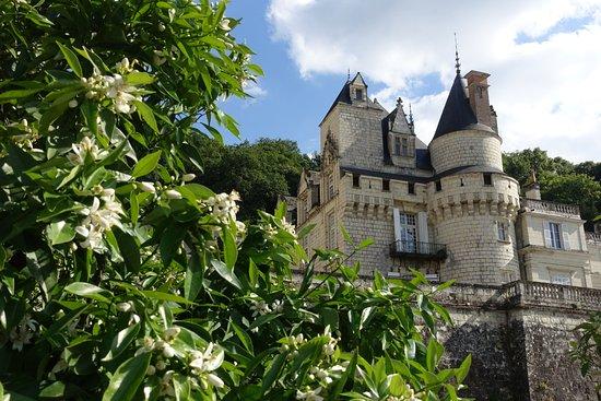 Rigny-Usse, فرنسا: Château d'Ussé - building