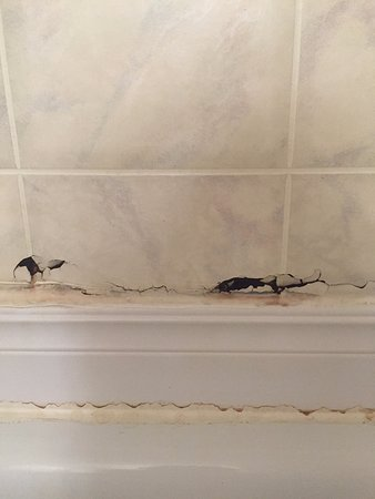 Bancroft Inn & Suites : Holes in the bath tiles. Went right through. Paint was also peeling on the bathroom door.