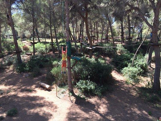 Ребёнку четыре года, детская трасса. - kuva: Jungle Parc, Santa Ponsa - TripA...