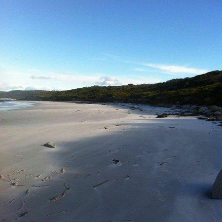 Coles Bay, Australië: IMG-20160723-WA0063_large.jpg
