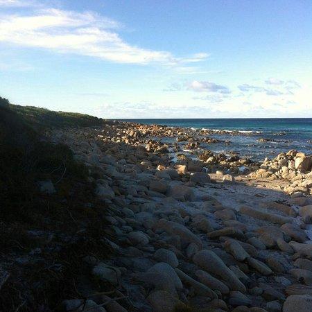 Coles Bay, Avustralya: IMG-20160723-WA0061_large.jpg