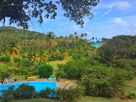 Mustique: View from Firefly Bequia