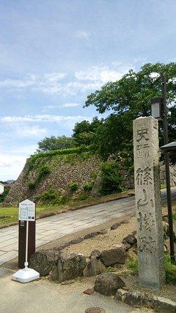 Sasayama, Japan: DSC_0188_large.jpg