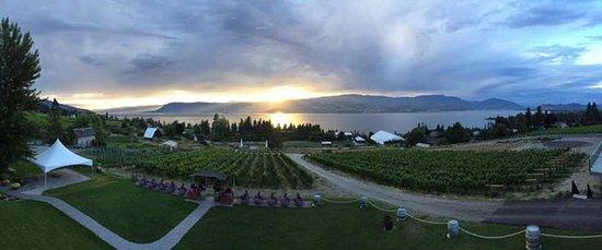 Summerhill Pyramid Winery: Summerhill Observation deck