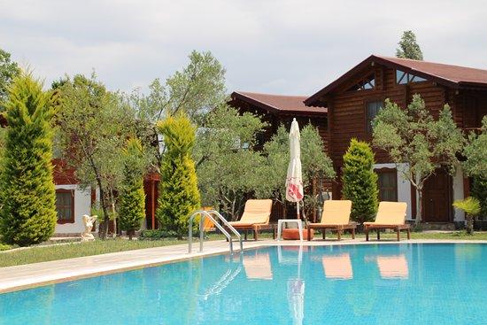Photo of Hotel Sunset Troia Ezine