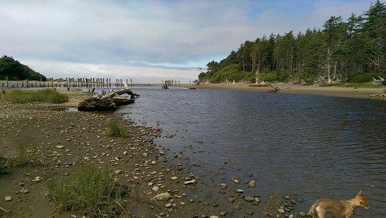 Moclips River: IMAG1156_large.jpg