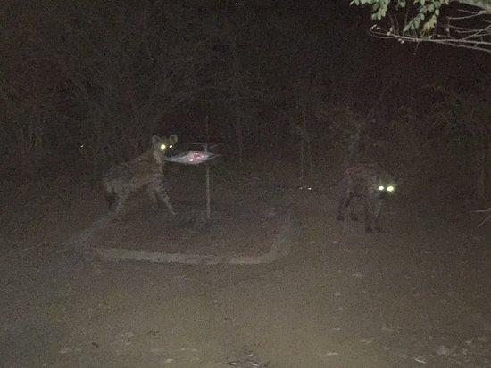 Hluhluwe Game Reserve, جنوب أفريقيا: photo1.jpg