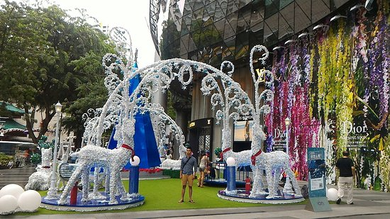 Orchard Road, Singapore: Jalan Orchard