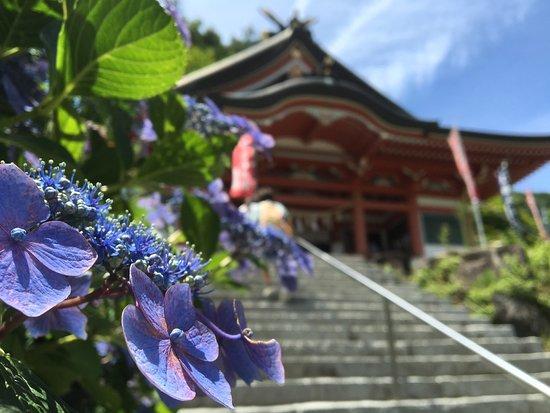 Meotogi Shrine: photo6.jpg
