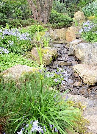 Tramore, Irland: Garden 6