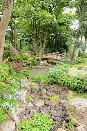Tramore, Irlanda: Garden 7