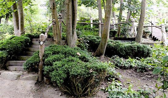 Tramore, Irlanda: Garden 9