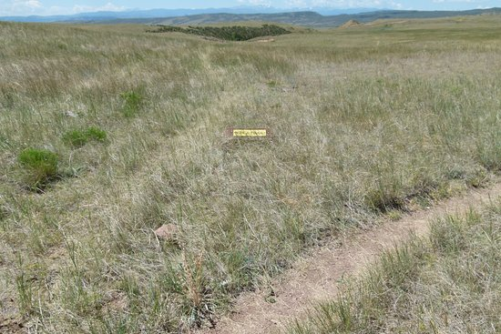 Fort Collins, CO: Trails are narrow and barely wide enough for one