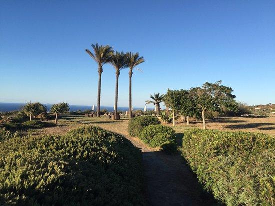 Zubebi Pantelleria : Zubebi