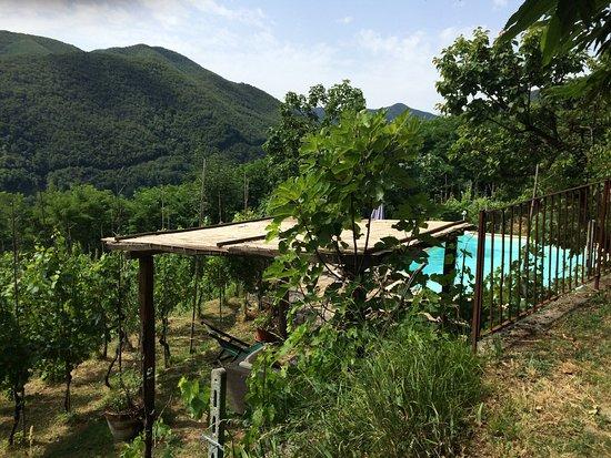 Pozzo di Mulazzo, Włochy: photo1.jpg