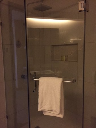 Acacia Hotel Manila: Shower enclosure