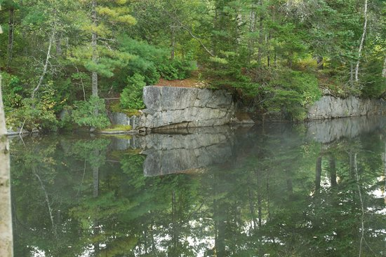 Sullivan, ME: Once an active quarry, nature has bloomed on these rocks again!