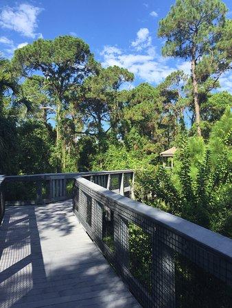 Coral Springs, FL: Along the boardwalk