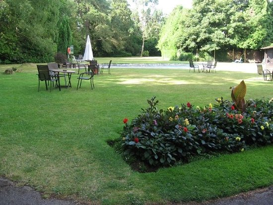 Forest park hotel brockenhurst reviews photos price - Hotels in brockenhurst with swimming pools ...
