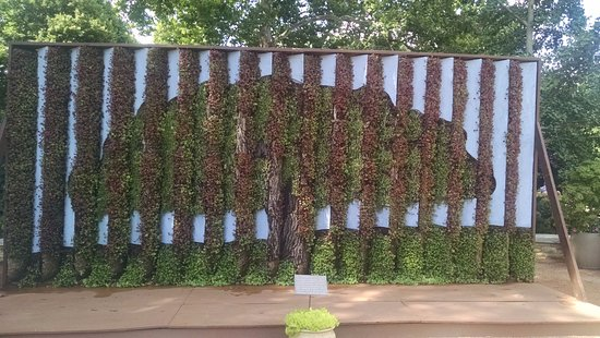 Lisle, IL: The Living Wall