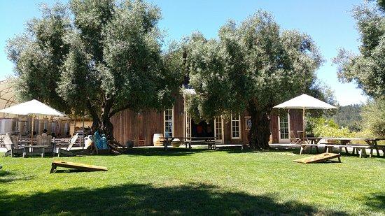 Healdsburg, Kalifornia: 20160723_131418_large.jpg