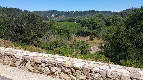 Healdsburg, Kalifornia: 20160723_113030_large.jpg