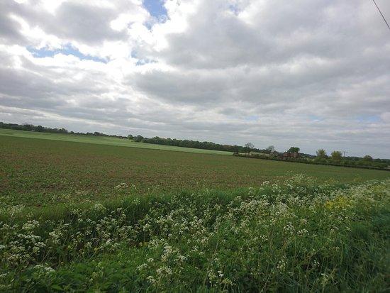 Pluckley, UK: DSC_0092_large.jpg