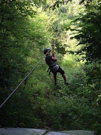 Verzy, Fransa: Arrivée de la tyrolienne par dessus les arbres au sommet de la montagne de Reims