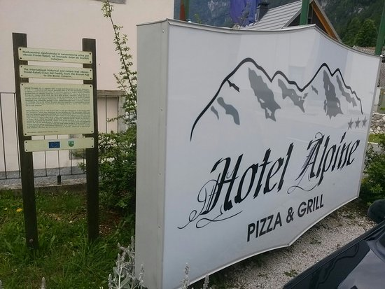 Log pod Mangartom, Eslovenia: Hotel Alpine