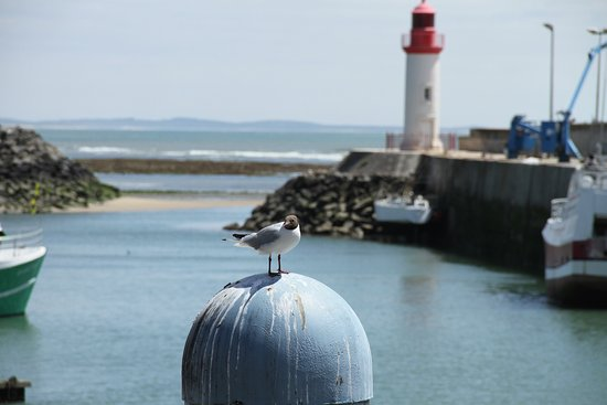 Saint-Pierre-d'Oleron, Francia: photo0.jpg