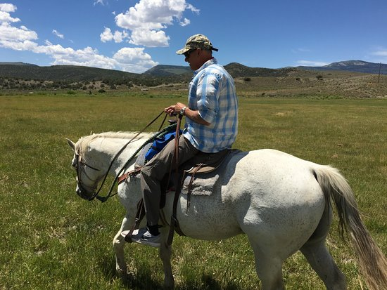 Wolcott, CO: Magoo a great horse!