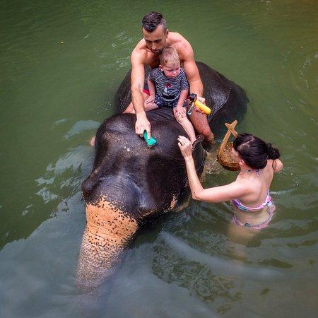 Phang Nga, Tailandia: Bathing time - for the whole family