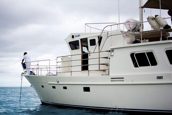 Yacht Santa Fe III