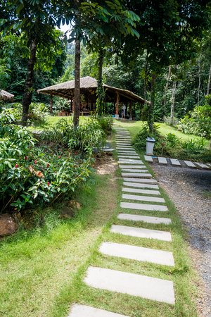 Phang Nga, Tailandia: Path up to 'welcome' hut - beware if you have a stroller/pram