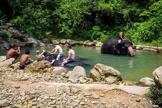 Phang Nga, Thailand: Bathing time