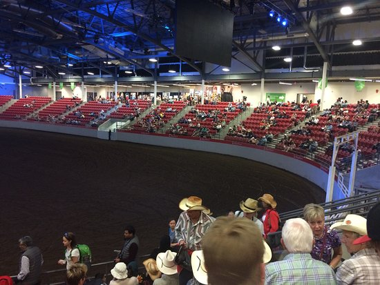 Rodeo Time At The Stampede This Is Just A Small Portion