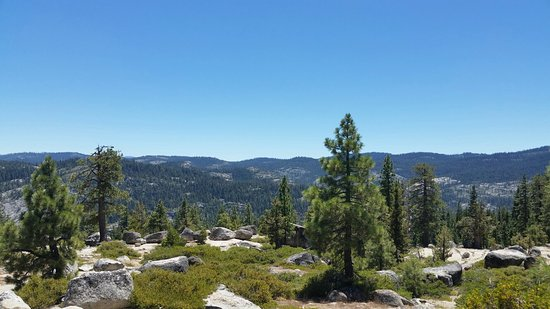 Bear Valley, Kaliforniya: Fantastic 7-18-16