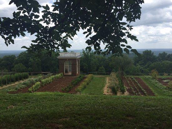 Charlottesville, Βιρτζίνια: photo3.jpg