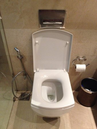 WelcomHotel Dwarka: Wc