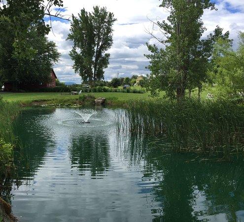 Tourterelle Restaurant: Pond